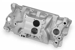 Holley Performance - Holley Performance Pro-Jection Intake Manifold 300-49