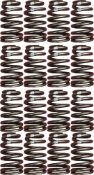 Chevrolet Performance Parts - 12499224 - CPP Performance LS Engine Valve Spring Kit (set of 16)