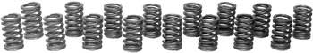 "Chevrolet Performance Parts - 12495494 - Small Block Chevy LT4 Valve Spring Kit - Used On 1996 LT4 Engines, ZZ4 & Fast Burn 385 Crate Engines (16 Springs) 1.32"" Diameter"