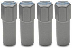 Proform - 141367 - Valve Cover Mini Nuts, Metallic Gray with Blue Bowtie Emblem